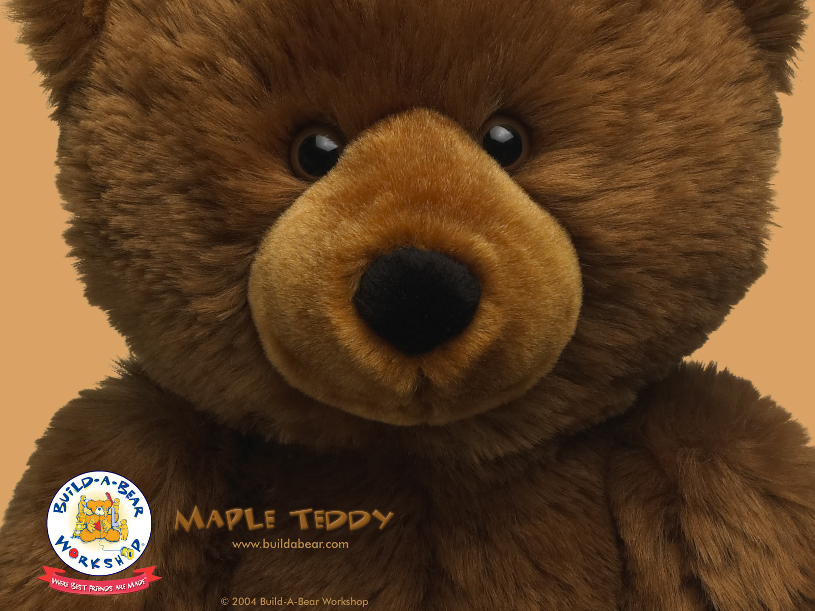 Build A Bear World